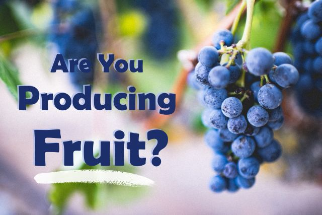 Are You Producing Fruit?