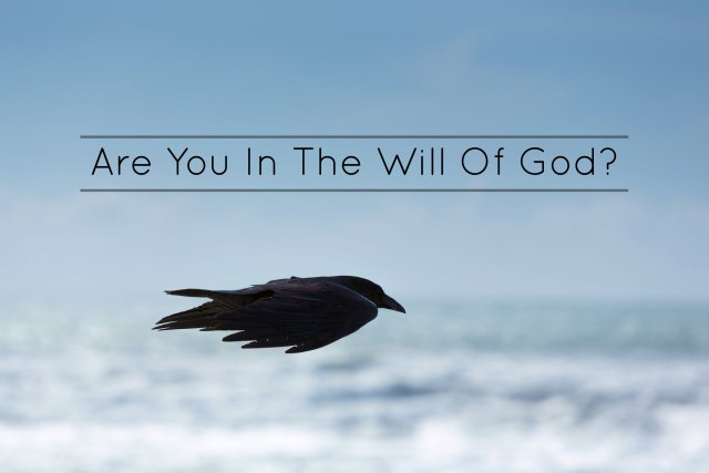 Are You In The Will Of God?