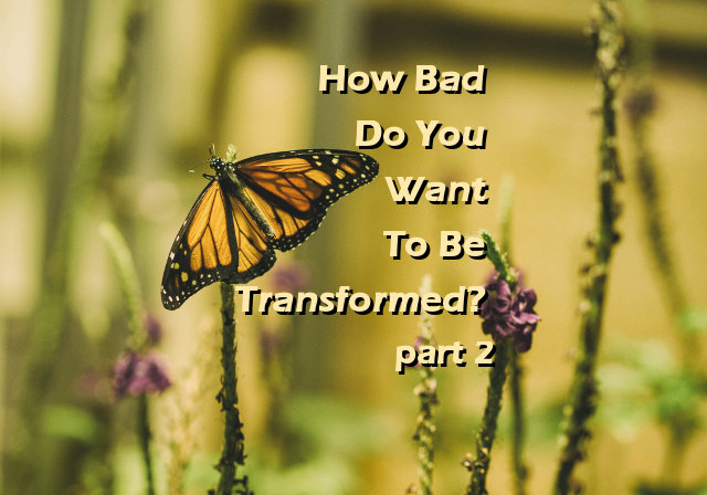 How Bad Do You Want To Be Transformed? part 2