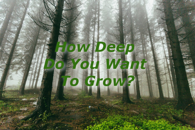 How Deep Do You Want To Grow?