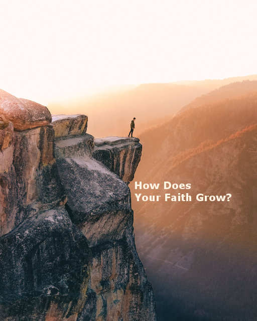 How Does Your Faith Grow?